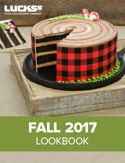 2017 Fall Lookbook