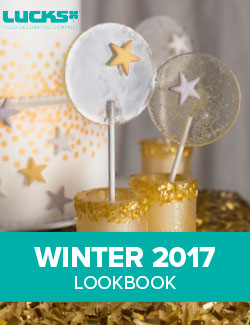2017 Winter Lookbook